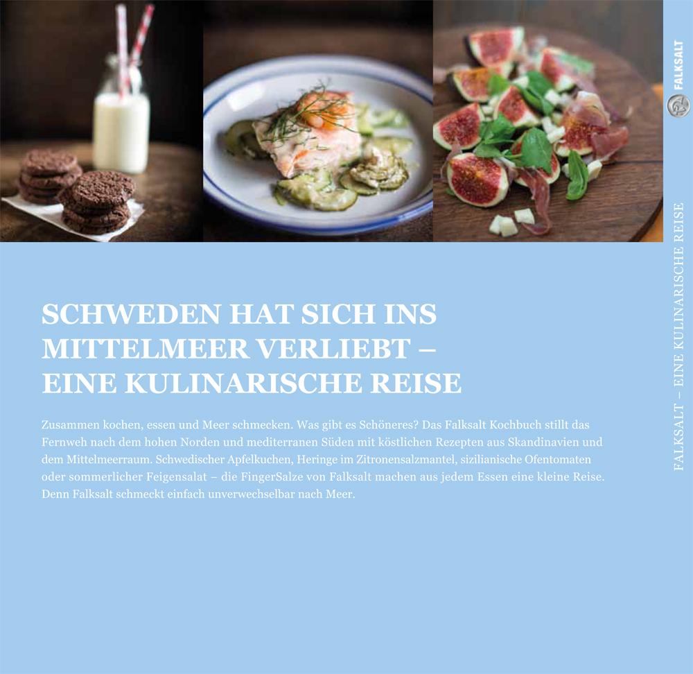 Kochbuch_Falksalt_U4